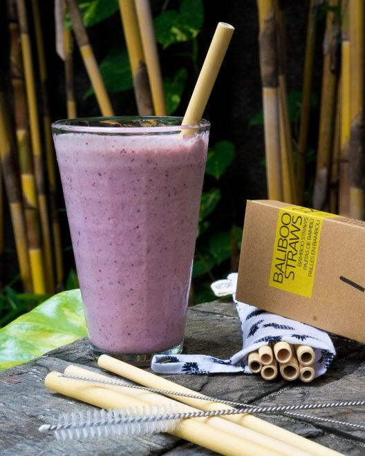 Bamboo Straws - 12 Packs