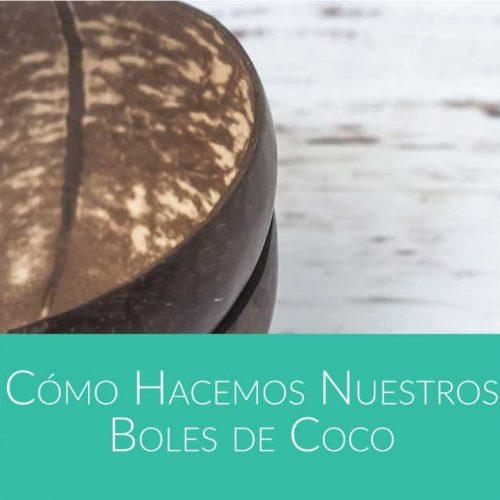 como hacer cuencos de coco de Bali Boo